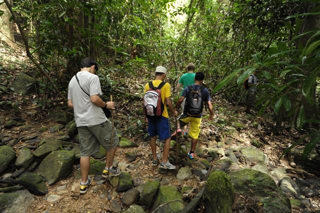 Junglewalla-Lubuksembilang-Trekking-Langkawi-12